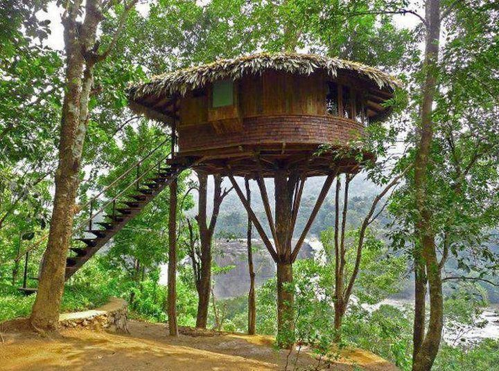Nice Tree Houses 50 best tree houses images on pinterest | architecture, live and