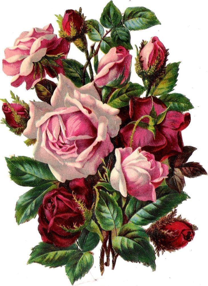 Oblaten Glanzbild scrap diecut chromo Rose 16,8 cm Blume fleur bouquet Strauß: