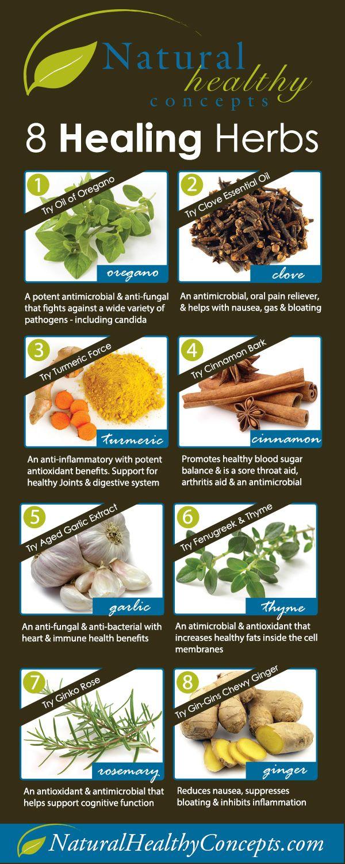 Chinese health herbal medicine supplement - 8 Best Healing Herbs