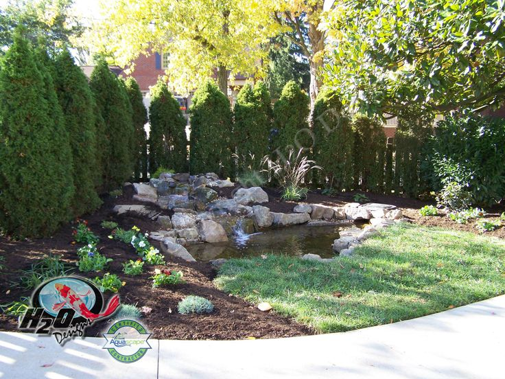20 best pond contractor installation repair maintenance for Small garden pond care