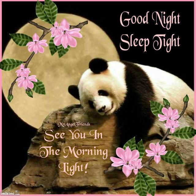 Good Morning My Sweet In German : Best images about good night blessings on pinterest