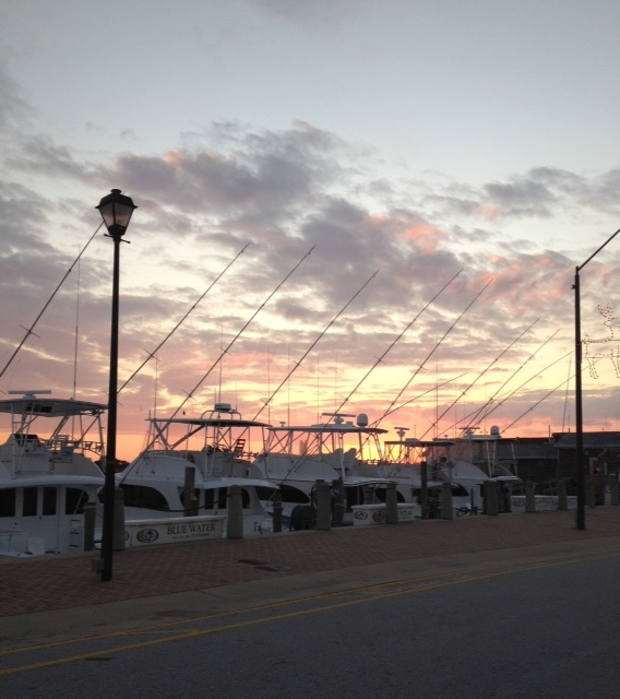 17 best images about carteret county on pinterest the for Fishing morehead city nc