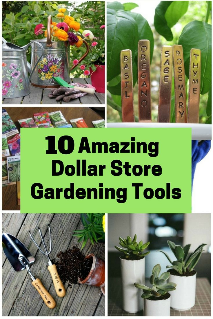 10 Amazing Dollar Store Gardening Tools – DIY & Self Sufficiency