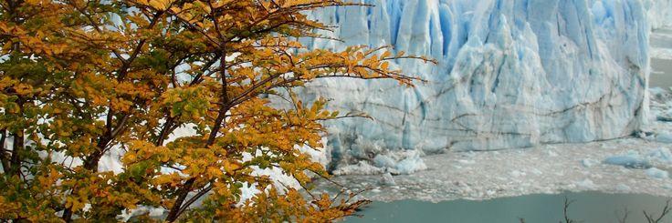 Glacier Perito Moreno Argentina