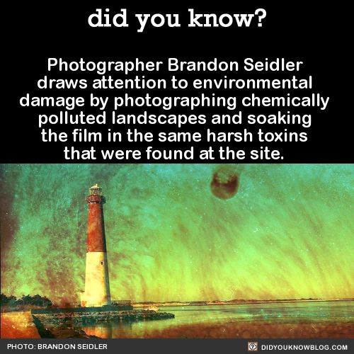 The developed film has been corroded by the same chemicals humans have imposed upon the environment being photographed.