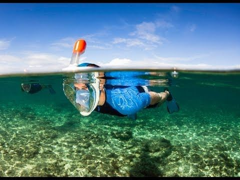 Easybreath Snorkel Mouth Gives Snorkeling A Makeover