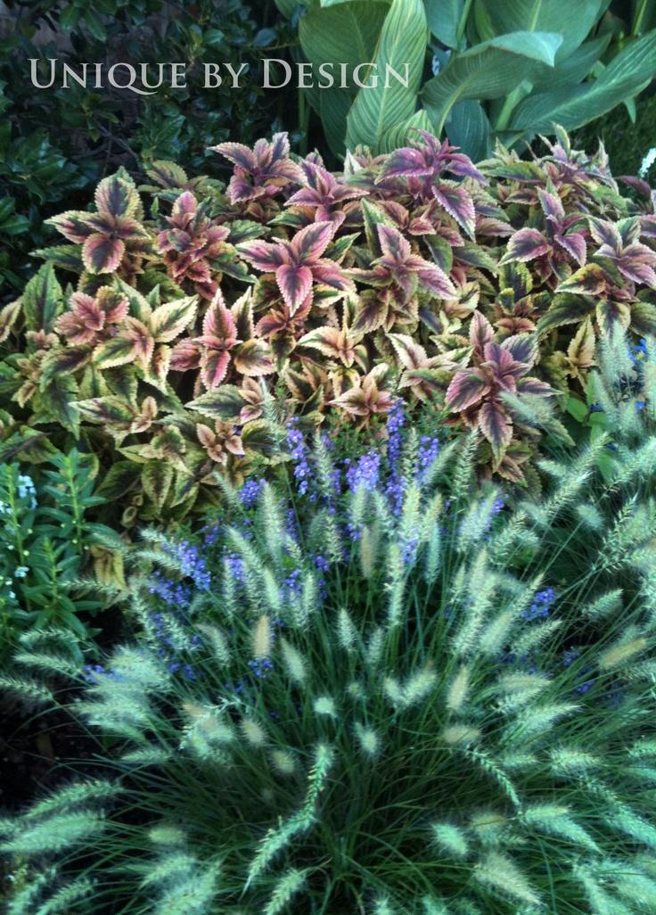 : Flowers Gardens, Helen Wei