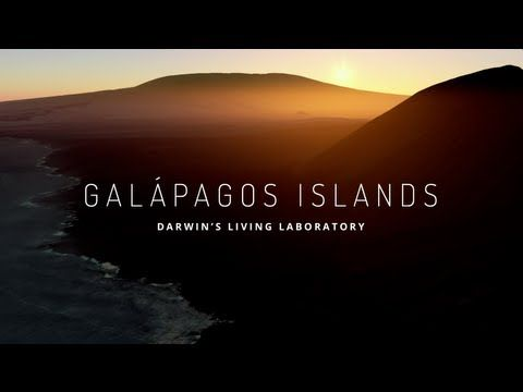 Explore the Galapagos' biodiversity with Google Street View - Cool use of the tech.