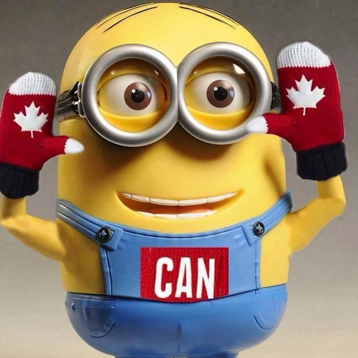 Canadian Minion :) (I have the same mitts!)