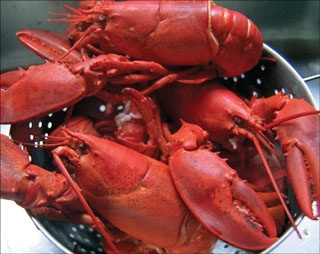 """""""Lobster is the third jewel in PEI's fishy crown..."""" from """"PEI - Shellfish Heaven,"""" Spring 2013. Read the full article at https://www.tasteandtravelmagazine.com/PEI_shellfish.html"""