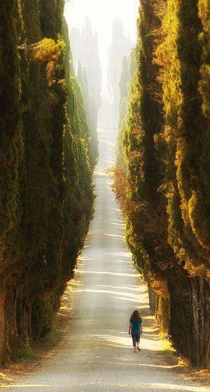 Italy - path of light