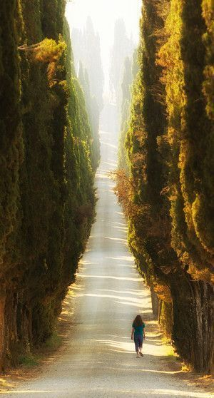 Italy - path of light