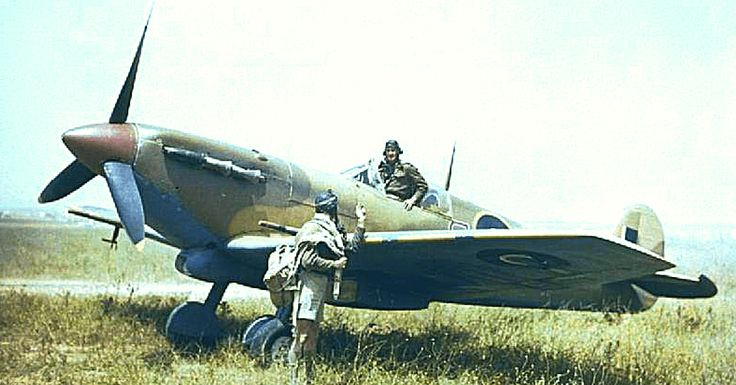 Supermarine Spitfire Mk V and pilots of No. 40 Squadron, South African Air Force, at Gabes in Tunisia, April 1943