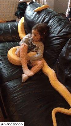 Solo ver qué la serpiente bosteza me dió sueño
