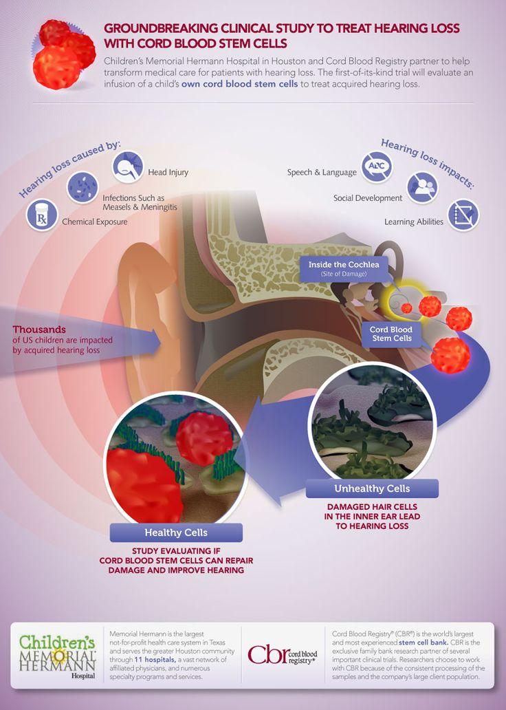 10 Best Science Infographics Images On Pinterest Stem Cells