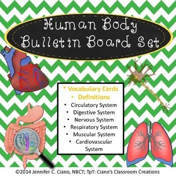 Human Body Systems Bulletin Board/Review Game $4.00