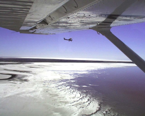 A view of Lake Eyre when full