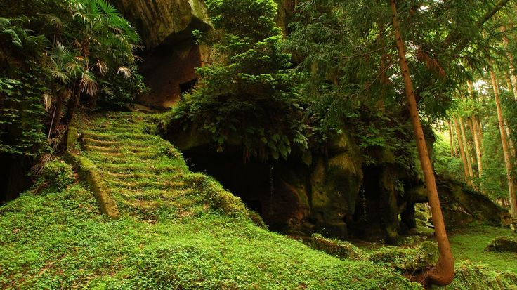 Green stepsForests, Japan, Paths, Stairs, Nature, Green, Places, Stairways, Fairies Tales