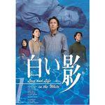 白い影/DVD/5巻セット