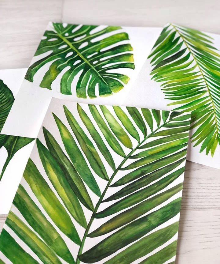 Hand Painted Tropical Leaves Illustrations Palm Trees Summer