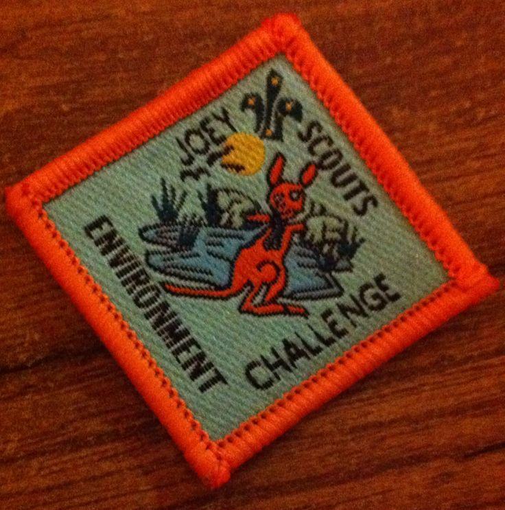 Environment challenge badge