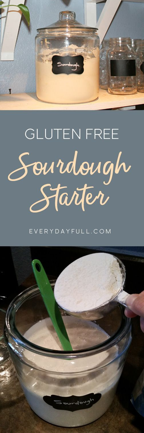GLUTEN FREE SOURDOUGH STARTER - Love sourdough bread but can't handle the gluten? We've got you covered! Click for a full tutorial on getting your own sourdough started today and enjoy bread again! #glutenfree #glutenfreerecipes #sourdough