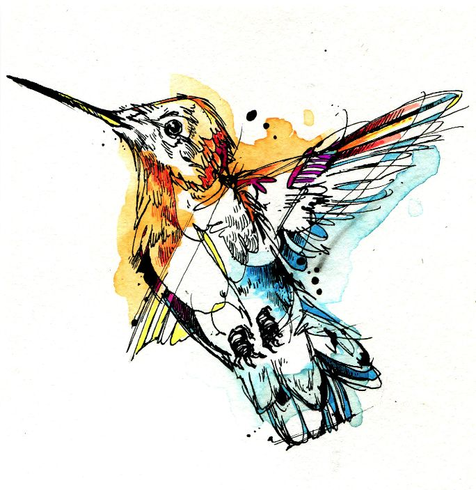 Little Gold Hummer: India Ink, Watercolor, Tombow Marker