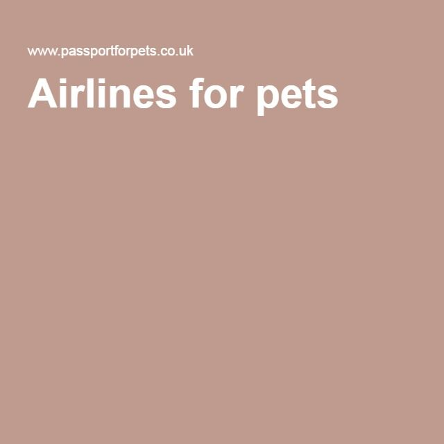 Passportforpets is a specialist pet shipping company that has been managing worldwide pet relocations for over 28 years. We only work with pet friendly airlines so if you want to know more, contact us! -- pet airways --- http://www.passportforpets.co.uk/airlines-for-pets.php