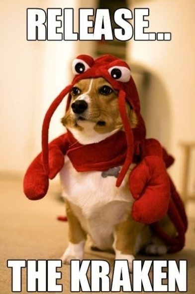 .Corgis, Puppies, Lobsters Dogs, Dresses Up, Halloween Costumes, Pets, So Funny, Kindergarten Writing, Animal