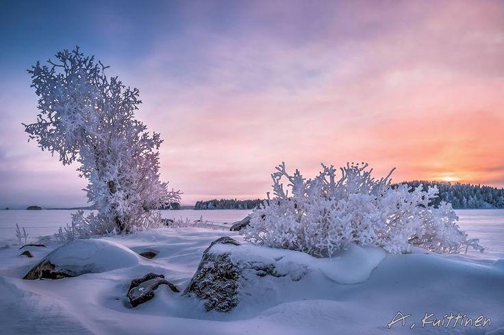 Katso, miten upealta Suomen luonto näyttää eri vuodenaikoina! – 29 kuvaa   Vivas > Talvi photo:Asko Kuittinen