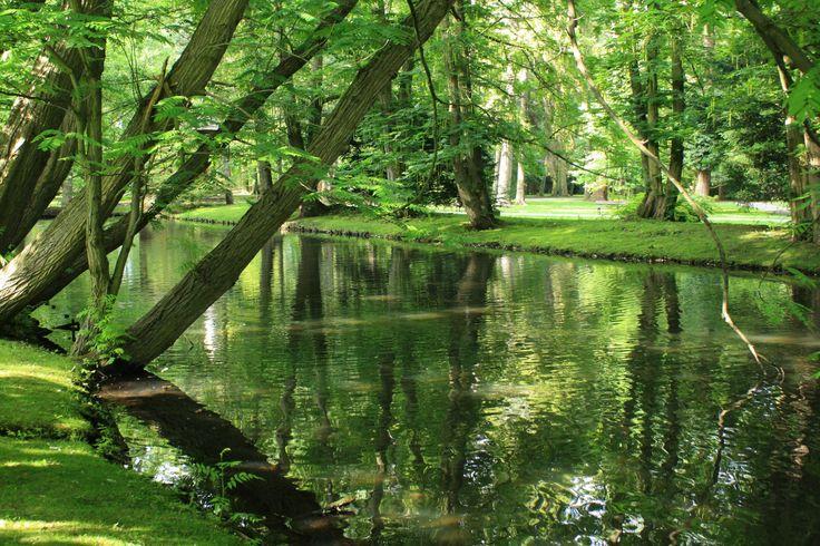 Park Oliwski / #pomorskie #pomorze #Poland #Polska #Oliwa #Park