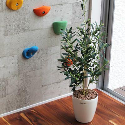 光の楽園 光触媒の人工観葉植物と造花の専門店