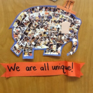 Based on the Elmer books by David McKee - a collage of pictures of students working together!