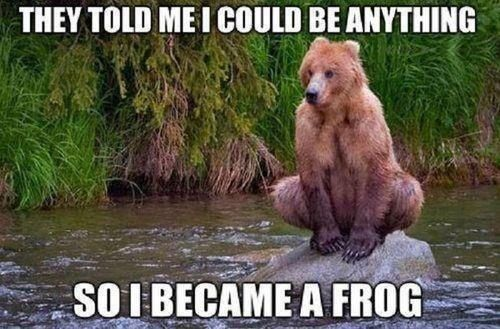 They told me I could be anything ... so I became a frog!    #frog #bear #funny #meme #poster