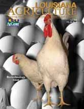 Louisiana Agriculture Magazine- 2003 issues online version