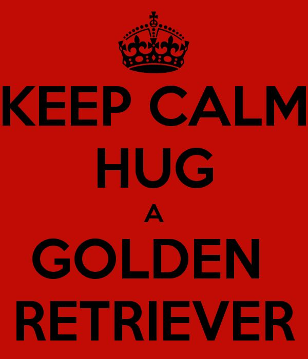 Google Image Result for http://sd.keepcalm-o-matic.co.uk/i/keep-calm-hug-a-golden-retriever.png