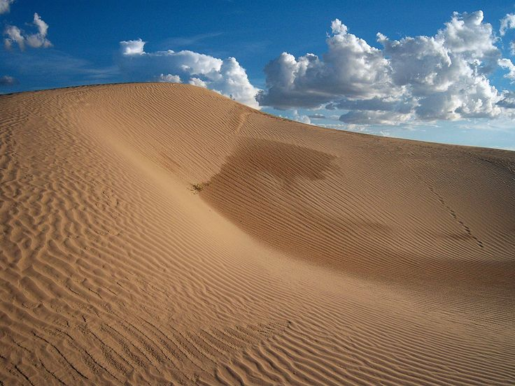The Samalayuca Dune Fields,  The dunes fields are a series of large but separated fields of sand dunes located in the northern part of the Mexican state of Chihuahua.
