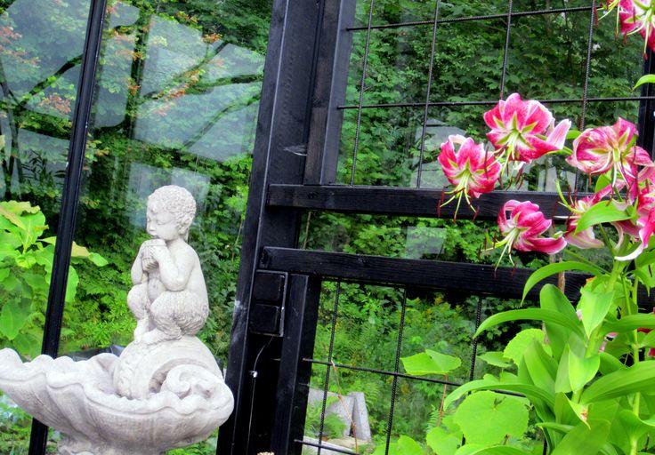 Greenhouse fountain