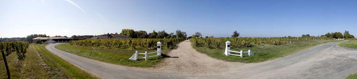 Lors d'une visite guidée vous aurez l'occasion de découvrir le vignoble du château Dauphiné-Rondillon. Pour cela il vous suffit de réserver votre visite sur Wine Tour Booking
