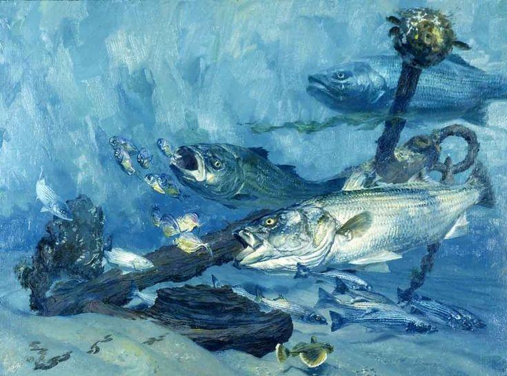 32 best underwater art images on pinterest underwater