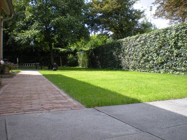 A landscape design that incorporates the changing shadow lines! | Strak bestrating