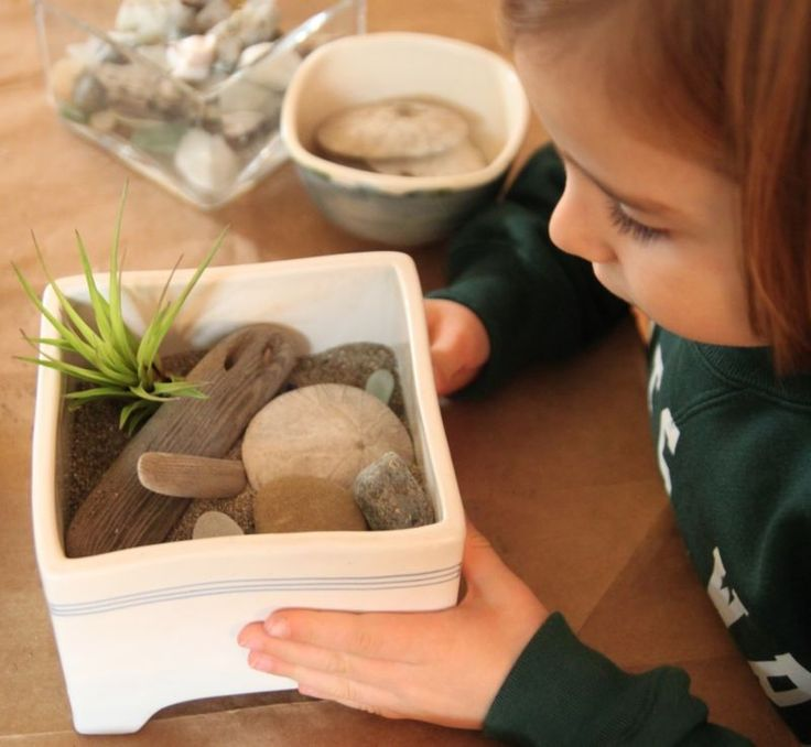 A way to remind yourself of the ocean even if you still have snow outside. :: Ocean-Inspired Zen Garden DIY