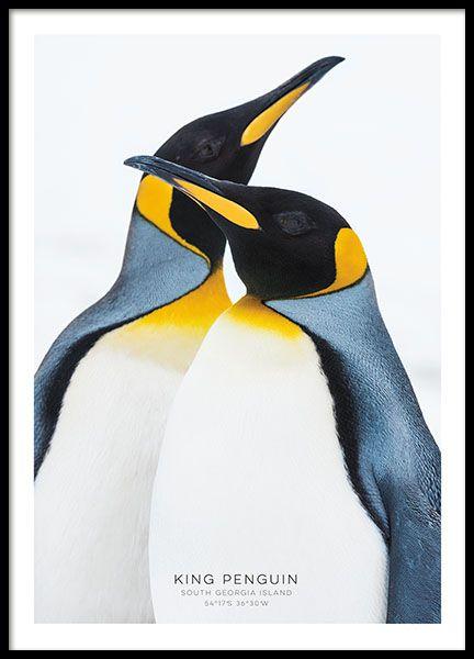 Blue ocean - 50x70Breathe - 30x40Dream without fear - 50x70King penguin - 50x70...