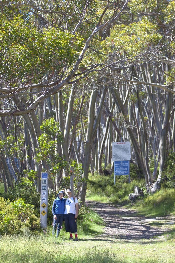 explore over 10kms of walking trails at Mt Baw Baw, which connect to the wider network of trails of Mt Baw Baw National Park
