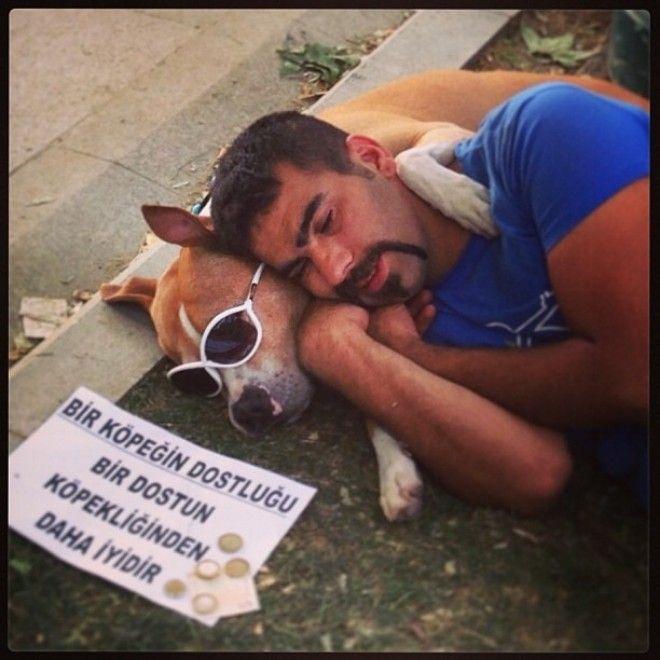 Un cane tra i giovani turchi. Su Twitter lo hanno definito The riot dog of Instabul - il cane della rivolta - attribuendogli laggettivo hipster per via degli occhiali da sole e il collare che indossa. Ma a colpire, oltre allo stile, è anche lattaccamento al suo padrone e la singolare