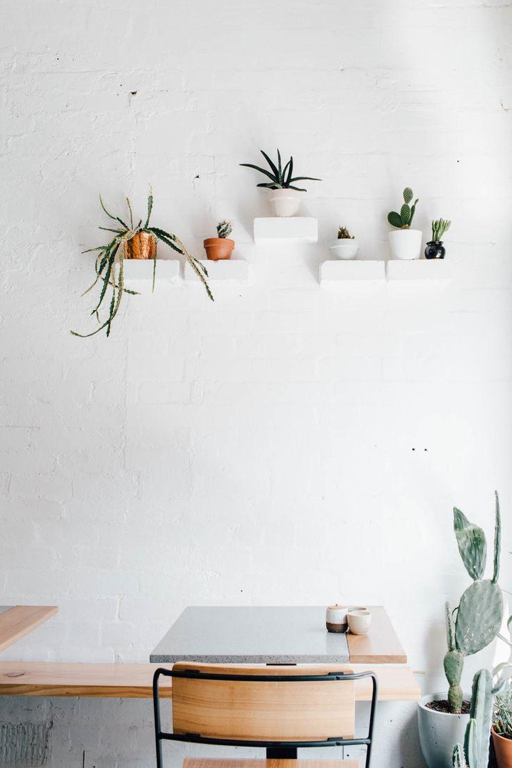 Cacti Decoration | Alexandra Strong