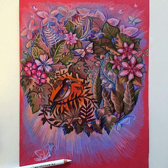 17 Best Images About Magical Jungle Coloring Book On Pinterest