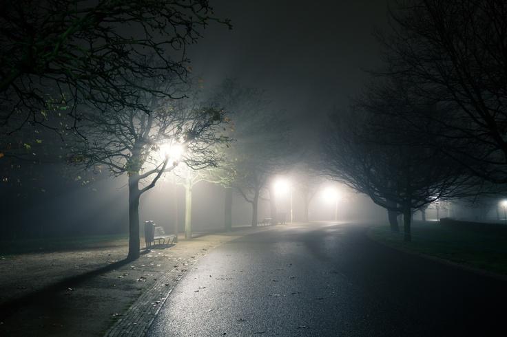 Vondelpark at night