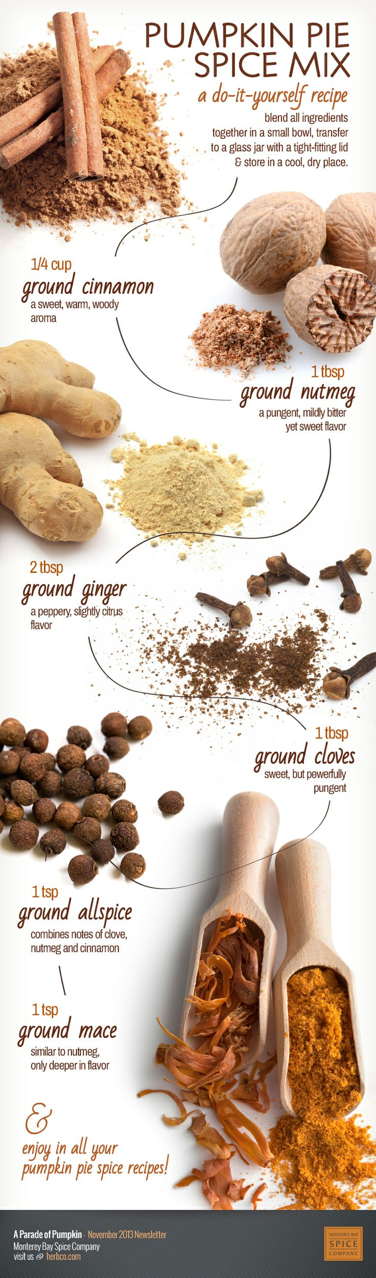 [ Infographic: Pumpkin Pie Spice Mix Recipe ] Made with: Cinnamon, nutmeg, ginger, cloves, allspice and mace. ~ from Monterey Bay Spice Company