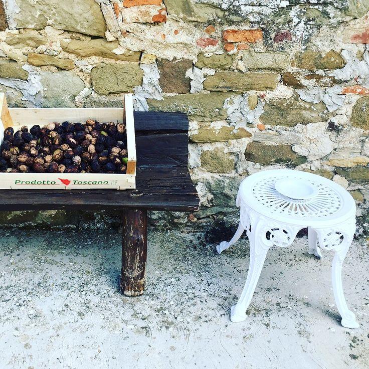 That's Italy!  #postcardsofitaly, #browsingitaly, #huntgramitaly, #exploringitaly, #whatalyis #preylileitaly #villacampestri #oliveoilresort #experience #oliveoil #mugello #tuscany
